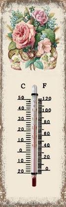 Immagine di Termometro in ferro